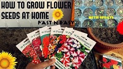 How To Grow Flower Seeds Fast (With Update)