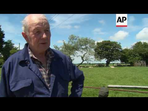 UK farmers crave independence but fear Brexit cost