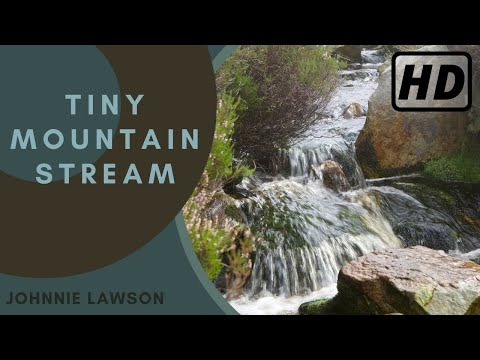 Nature Sounds Birds Singing Sound of Water Johnnie Lawson Relaxing Tiny Waterfall Heather