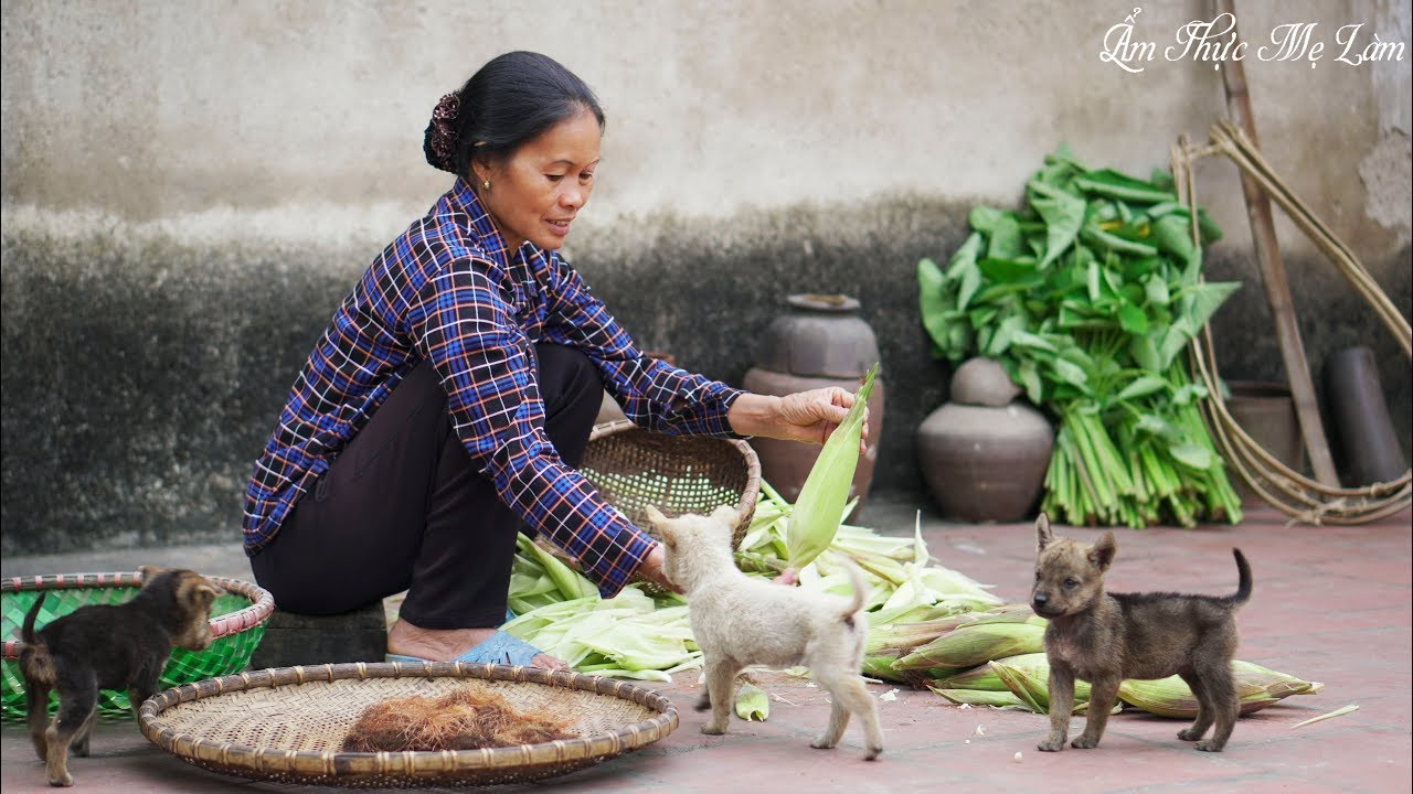 Ngô nếp luộc I Món ngon dân dã mà ai cũng mê ( Boiled Waxy Corn ) I Ẩm Thực Mẹ Làm