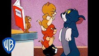 Tom y Jerry en Español | En casa, pero no a solas | WB Kids