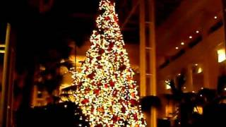 Opryland Christmas Tree Vid 036 Thumbnail