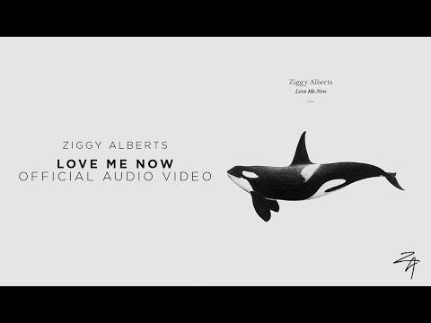 Ziggy Alberts - Love Me Now (Official Audio)