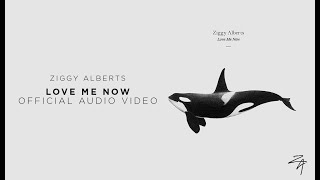 Ziggy Alberts - Love Me Now (Official Audio)