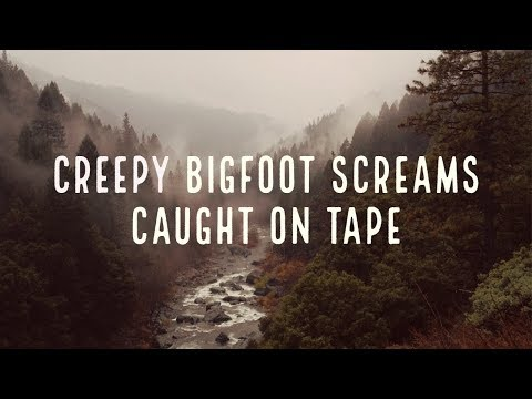 BIGFOOT SCREAMS CAUGHT ON TAPE - (VERY CREEPY) - Mountain Beast Mysteries Episode 50.