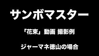 """サンボマスター「花束」MV  """"あなたの「花束」動画送ってもらっていいですか?"""" 動画撮影例"""