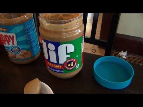 5-in-3 Peanut Butter Tasting