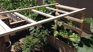 Making A Cucumber Trellis 2