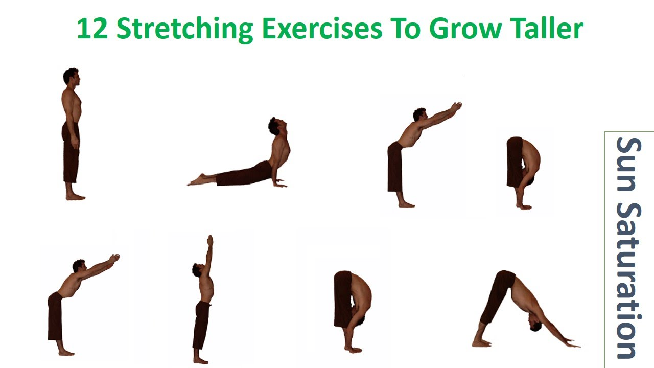 Why Stretching Does Work To Gain Permanent Height Increase
