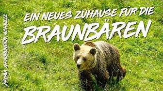 Tierschutz im Arosa Bärenland
