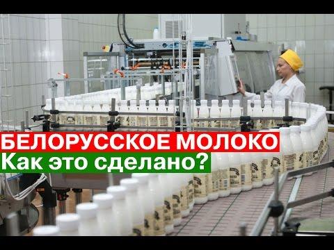 Белорусское мясо на экспорт. Какая белорусская продукция скоро .