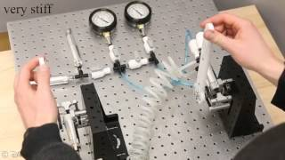A Low-Friction Passive Fluid Transmission and Fluid-Tendon Soft Actuator