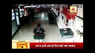 Pratyakshdarshi : 50 Thousand Theft From Talaja Bank, Watch CCTV And Full Report
