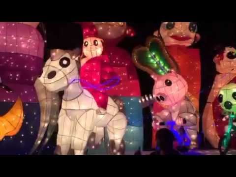 💥Far East Adventure Travel💥Taipei 's Dazzling Lantern Festival 🏮🐒🏮 #chinesenewyear #travel