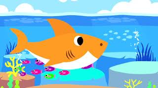 Baby Shark Song For Kids by Niki Nursery Rhymes