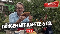 Dünger aus Kaffee, Bananenschalen und mehr | Horst sein Schrebergarten