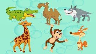 Пазлы для самых маленьких. Пазлы животные . Puzzle animals
