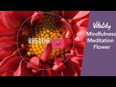 Mindfulness Meditation | Flower | Vitality UK