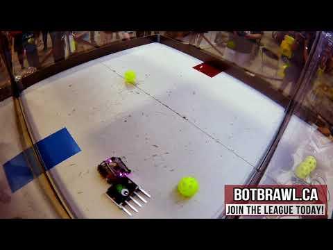 BotBrawl Kitchener 2018 - Beetle- Monster Mash vs Bucky