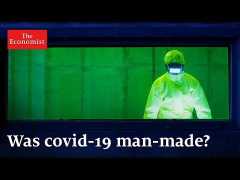 Did Covid-19 leak from a high-security lab?