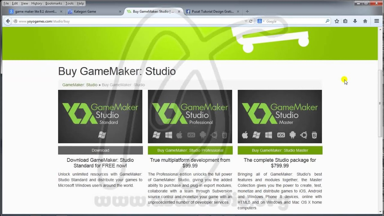 game maker studio standard vs professional