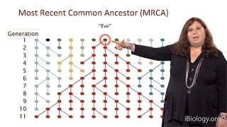 Sarah Tishkoff (U. Pennsylvania) Part 1: African Genomics: Human Evolution