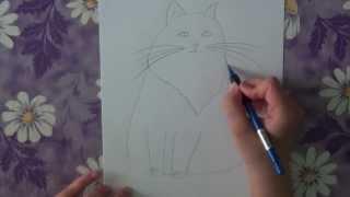 Как нарисовать кота поэтапно. Часть 5.(В данном видео я расскажу о том, как нарисовать поэтапно кота. Рисуйте с нами в нашей группе http://vk.com/shkola_izo...., 2013-05-12T06:05:41.000Z)