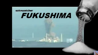 Fukushima SALT In The Wound w/ Arnie Gundersen 12/18/15