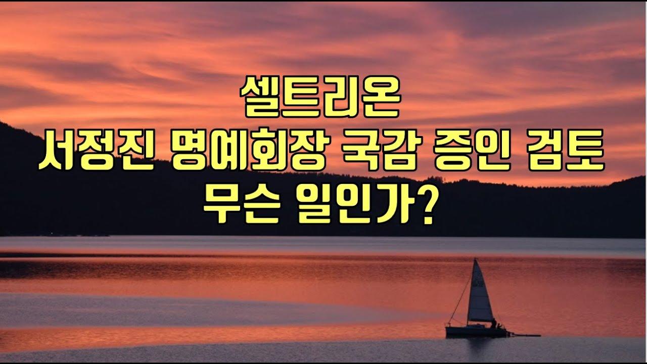[ 주식 ] 셀트리온 서정진 명예회장 국감 증인 검토, 무슨 일인가?
