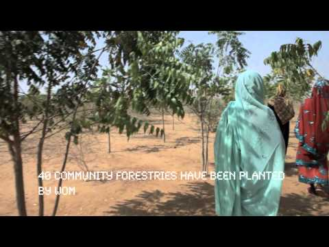 Women Lead The Way Out Of Hunger In Darfur