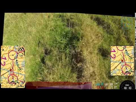 Orienteering NZ Champs Relay