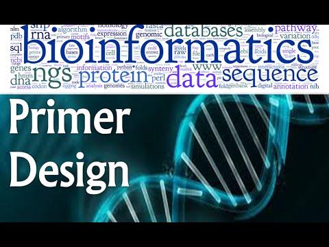 Bioinformatics lecture 16 primer design