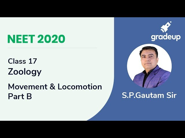 NEET 2020 | Movement and Locomotion - Part B | Zoology | Class 17