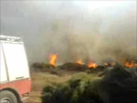 MANIKIA-EVIA 2007 FIRE