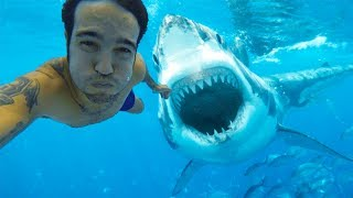 10 Most Dangerous Selfies Ever Taken