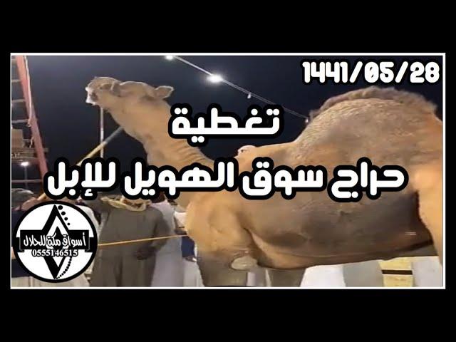 تغطية حراج سوق الهويل 1441 05 29 هـ Youtube