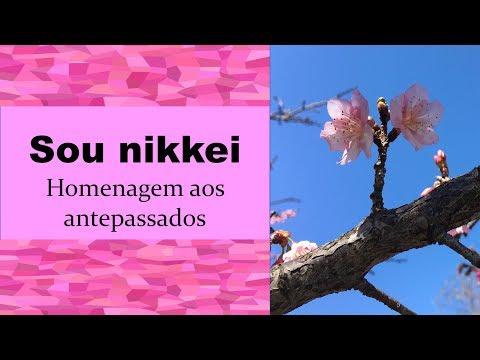 Sou nikkei - homenagem aos antepassados