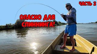 Рибалка в Астрахані! Не очікували, що сома на квок можна ловити так! Риболовля на джиг і раттлины