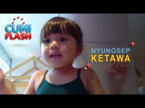 Gempi Ketawa Lihat Gading Nyungsep Naik Perosotan - CumiFlash 14 Desember 2018