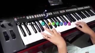 Tự Học Đánh -Ngắm Hoa Lệ Rơi organ (  Intro có nốt nhạc )
