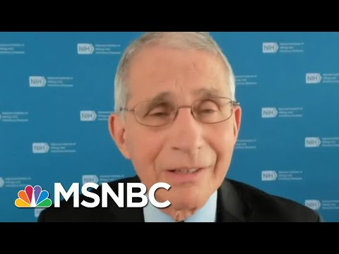 How To Have A Safe Thanksgiving In The Time Of Covid-19 | All In | MSNBC