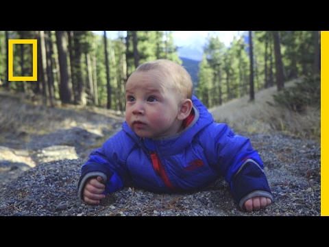 Watch Adorable Babies Go on a Hilarious High-Altitude Adventure | Short Film Showcase