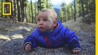 Watch Adorable Babies Go on a Hilarious High Altitude Adventure | Short Film Showcase
