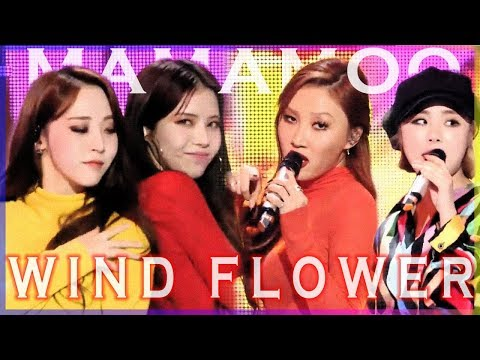 [HOT] MAMAMOO- Wind Flower, 마마무 -Wind Flower Show Music core 20181208