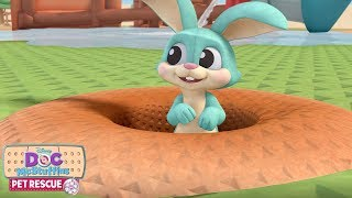 Pet Rescue: Billions of Bunnies | Doc McStuffins | Disney Junior
