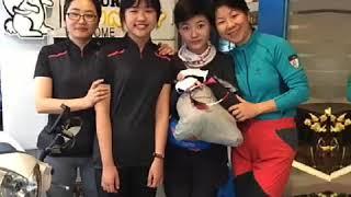 淡水住宿旅行邦尼青年旅店Tourist Bunny Hostel Taipei