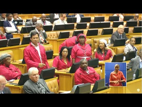 """Julius Malema Is A Mickey Mouse CIC""  - Groenewald FF Plus"