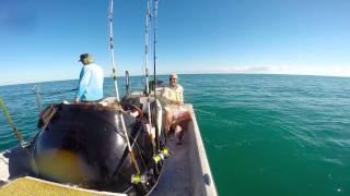 Fishing charter corpus christi for Deep sea fishing corpus christi