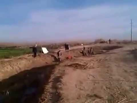 FAO - Iraq Cash for Work project-Canal Cleaning