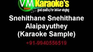 Snehithane Snehithane Tamil Karaoke Sample
